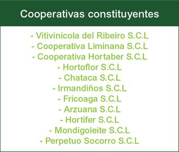 Cooperativas Constituyentes